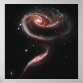 Galaxias que obran recíprocamente del Arp 273 Póster