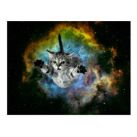Galaxy Cat Universe Kitten Launch Postcard