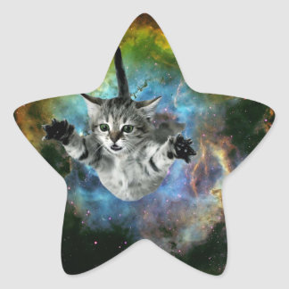 Galaxy Cat Universe Kitten Launch Star Sticker