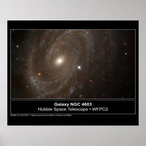 Galaxy NGC 4603 Hubble Telescope Photo Poster