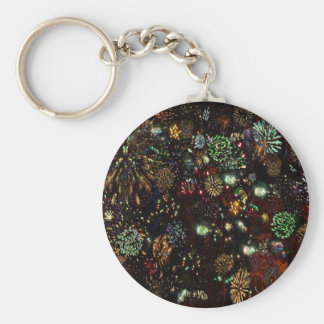 Galaxy of Fireworks Collage 12 13 2010  2859b Key Chains