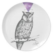 Galaxy owl 1 melamine plate