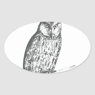 Galaxy owl 1 oval sticker