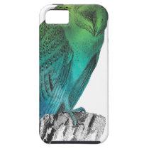 Galaxy owl 2 iPhone SE/5/5s case