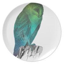 Galaxy owl 2 plate