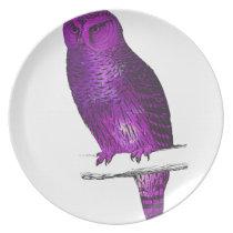 Galaxy owl 3 melamine plate
