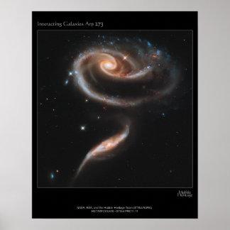 Galaxy Rose Poster