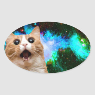 GALAXY SPACE CAT OVAL STICKER