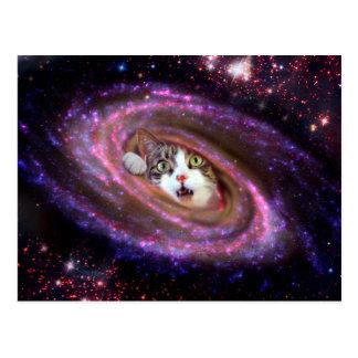 Galaxy Space Cats LOL Funny Postcard