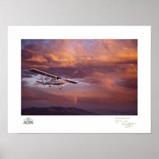 Galería de Skyfire Skycatcher Póster