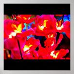 Galería Poster-Diversa/de la Abstracto-Luz 16
