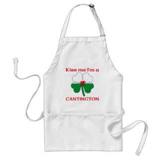 Galés personalizado me besa que soy Cantington Delantal