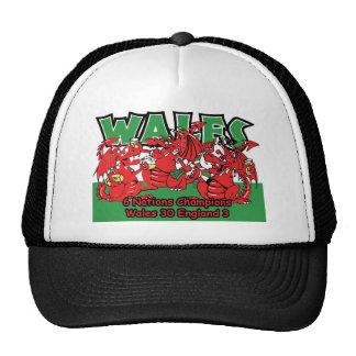 Galés seis campeones del rugbi de la nación, W 30- Gorra