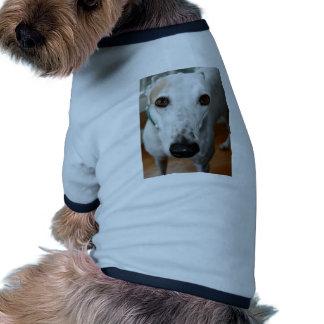 Galgo grande de la cara camisetas de mascota