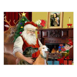 Galgos de Santa en casa (dos) Postal