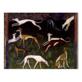 Galgos medievales en las maderas profundas postal