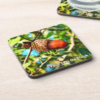 Galilee Acorn Beverage Coaster