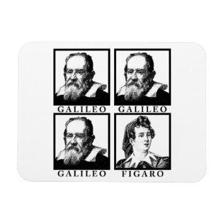 Galileo Figaro BW Imán De Vinilo