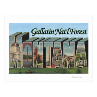 Gallatin Nat'l Forest, Montana Postcard