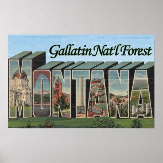 Gallatin Nat'l Forest, Montana Print
