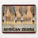gallery07, CEBRA AFRICANA Tapetes De Ratones