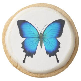 Galleta azul de la mariposa de Ulises Swallowtail