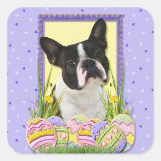 Galletas del huevo de Pascua - Boston Terrier Pegatina Cuadrada