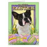 Galletas del huevo de Pascua - Boston Terrier Tarjetas