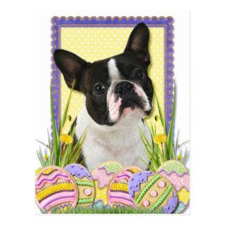 Galletas del huevo de Pascua - Boston Terrier Postal