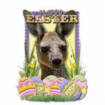 Galletas del huevo de Pascua - canguro Esculturas Fotograficas