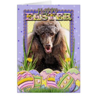 Galletas del huevo de Pascua - caniche - chocolate Felicitaciones