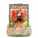 Galletas del huevo de Pascua - caniche - rojo Esculturas Fotográficas