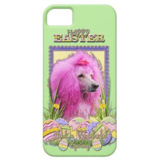 Galletas del huevo de Pascua - caniche - rosa iPhone 5 Case-Mate Protectores