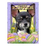 Galletas del huevo de Pascua - chihuahua Tarjetas Postales
