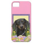 Galletas del huevo de Pascua - Dachshund iPhone 5 Case-Mate Carcasa