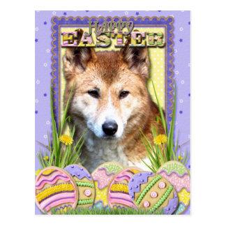 Galletas del huevo de Pascua - Dingo Postal