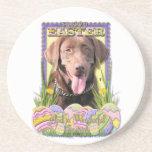 Galletas del huevo de Pascua - Labrador - chocolat Posavasos Personalizados