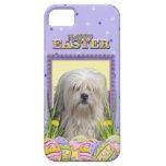 Galletas del huevo de Pascua - Lowchen iPhone 5 Case-Mate Fundas