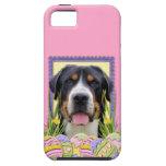 Galletas del huevo de Pascua - mayor perro suizo d iPhone 5 Case-Mate Funda