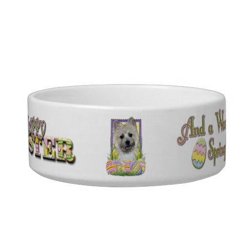 Galletas del huevo de Pascua - mojón Terrier Boles Para Gatos