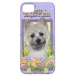 Galletas del huevo de Pascua - mojón Terrier iPhone 5 Case-Mate Protectores