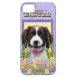 Galletas del huevo de Pascua - perro de aguas de s iPhone 5 Case-Mate Cobertura