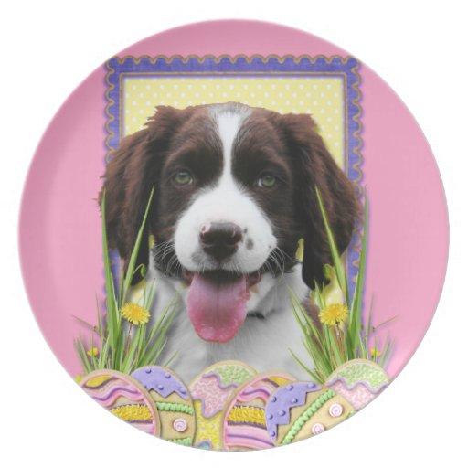 Galletas del huevo de Pascua - perro de aguas de s Plato De Comida