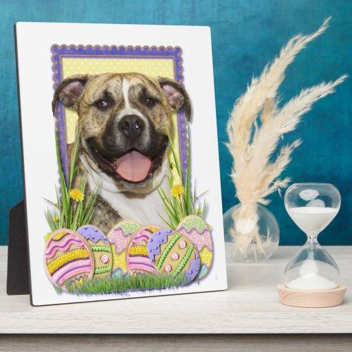 Galletas del huevo de Pascua - Pitbull - Tigger Placas Para Mostrar