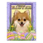 Galletas del huevo de Pascua - Pomeranian Postal