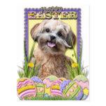 Galletas del huevo de Pascua - ShihPoo Postal