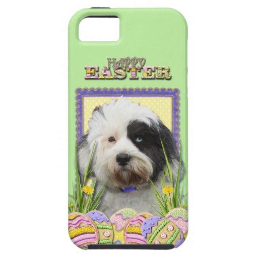 Galletas del huevo de Pascua - Terrier tibetano iPhone 5 Case-Mate Fundas