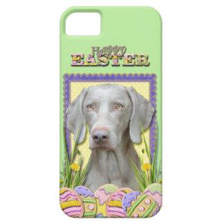Galletas del huevo de Pascua - Weimaraner iPhone 5 Cárcasa