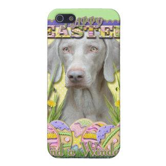 Galletas del huevo de Pascua - Weimaraner iPhone 5 Carcasas