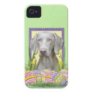 Galletas del huevo de Pascua - Weimeraner iPhone 4 Case-Mate Coberturas